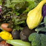 low carb vegetables