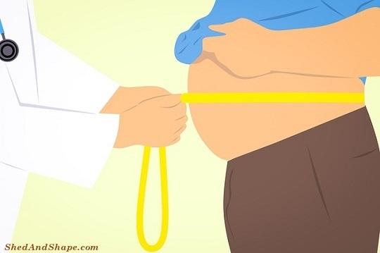 visceral fat, low carb